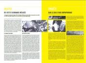 Yellow Flag, anne delemotte, édition, 2010 - image Jeremy Ledda - Graphisme Fran