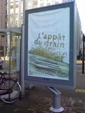 L'appat du grain
