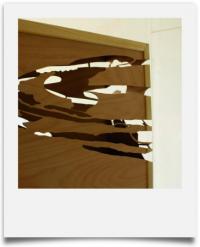 Tamas Szvet, Case Study