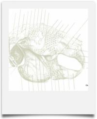 Carton de l'exposition de Valérie Vaubourg à la Bibliothèque Universitaire du Mo